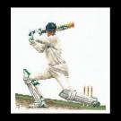 borduurpakket cricket