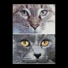 borduurpakket cats, jack&luna